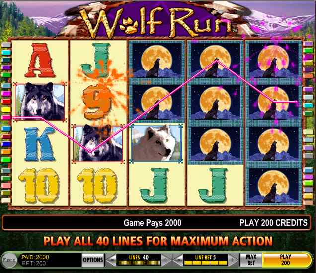 Pokies wolf run gambling expert witness